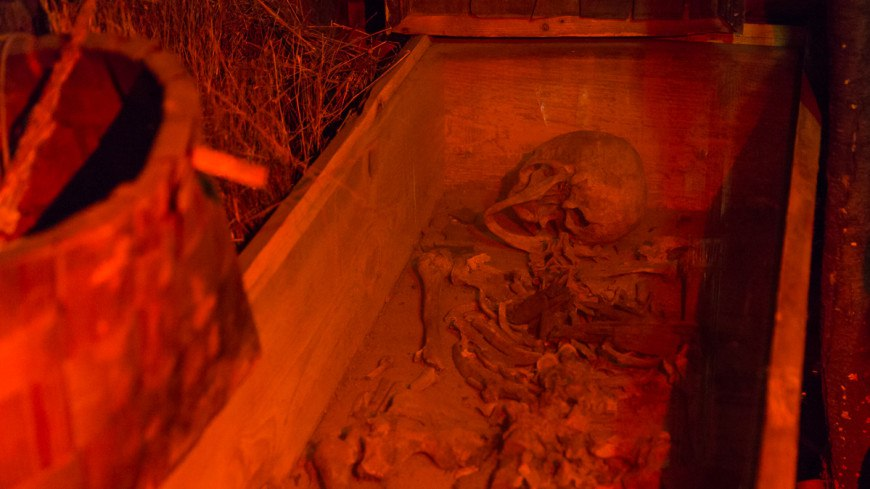 В Китае обнаружили череп неизвестного науке предка человека