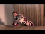 Don Diablo ft. A R I Z O N A - Take Her Place _ Official Music Video