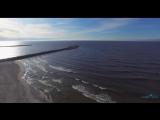 Чайки, лебеди, море, пляж, мол, Балтийск 2017