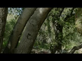 Орвилл 2 сезон 4 серия / The Orville 1x04 Promo If the Stars Should Appear (HD)