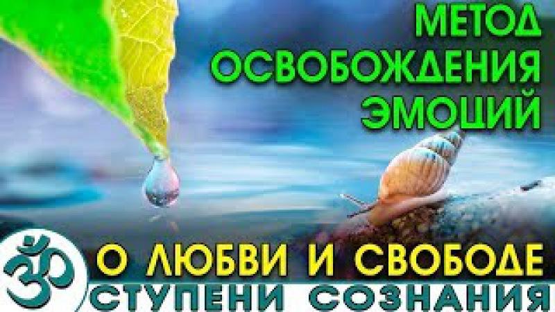 Метод освобождения эмоций. (Nikosho)
