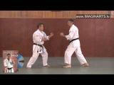 Okinawa Karate Goju-Ryu - Geki Sai Dai Ichi Renzoku Bunkai - sensei Zenei Oshiro - YouTube
