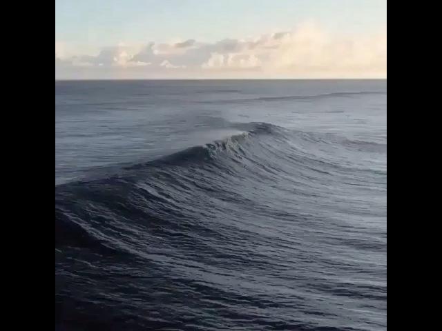 Moni_moni93 video