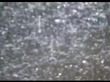 fennesz wozencroft Liquid Music excerpt