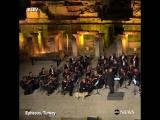 Пёс пришёл на выступление оркестра классической музыки в Турции.