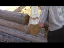 Рубим углы в верхнюю чашу Сруб своими руками Часть 10 1