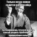 Николай Сеняков фото #34