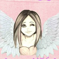 wings_khv