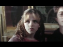 Vine Harry Potter Гарри Поттер