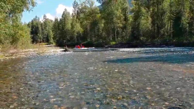 Вот так едет лодка Выдра на мелководье, почти без воды и с грузом водомет водометныелодки выдра лодкивыдра tohatsu50 outb