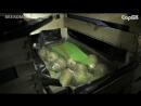 На рынке нашли 1 7 тонны санкционных груш