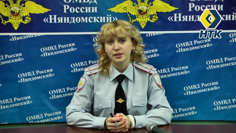 Новости Няндома Выпуск № 56