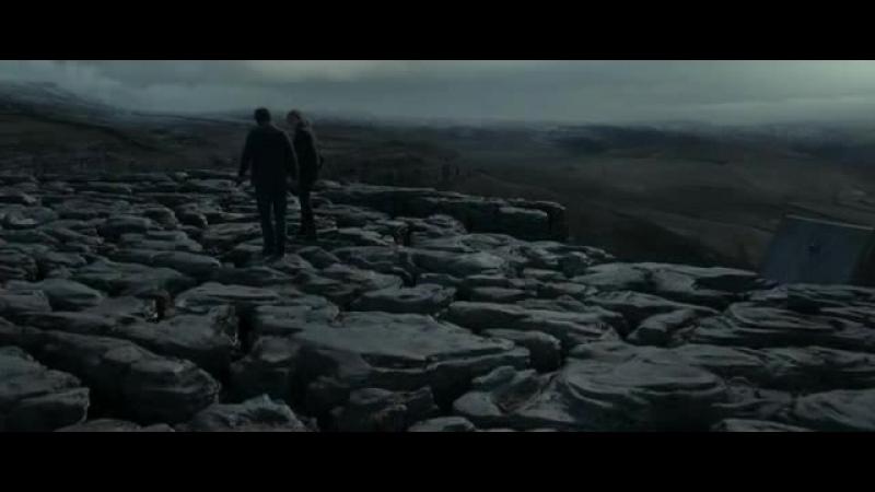 Harry Potter und die Heiligtümer des Todes um etw nicht herumkommen