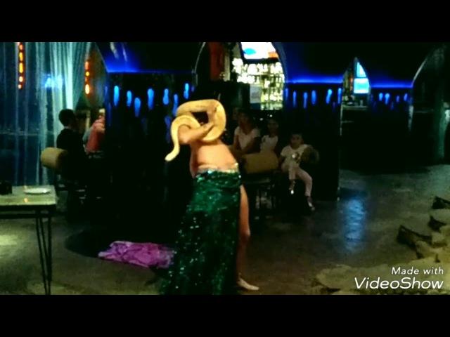 HOT SNAKE BELLY DANCE PYTHON Snakecharmer Bellydancer Model Natalia Liseeva