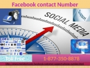 Want to save FB posts for future? Contact our Facebook Contact Number 1-877-350-8878