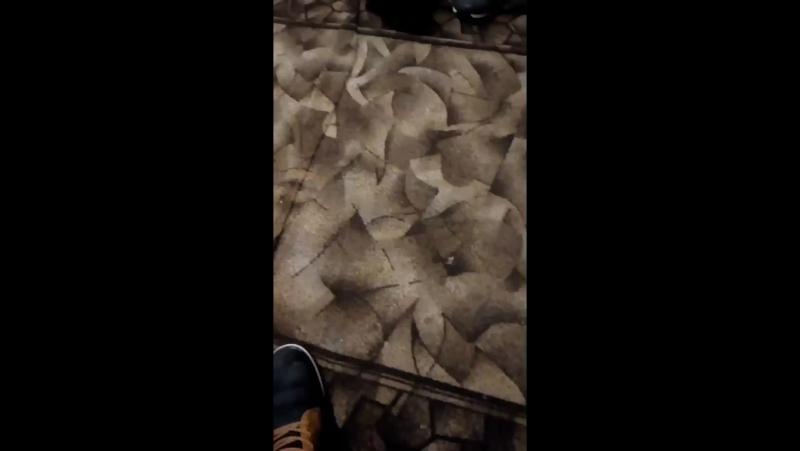 Kolibri Seca-Vines - Live