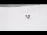Снежный бой