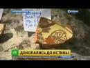 На раскопках в Крыму нашли кости съеденных собак и захоронение детей
