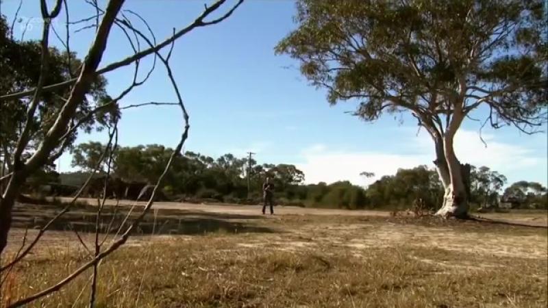 Хищники-убийцы Австралии. Дикие животные. Документальный фильм
