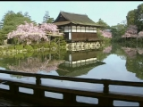 Sakura - John Singer (Shakuhachi Master) - bamboo flute