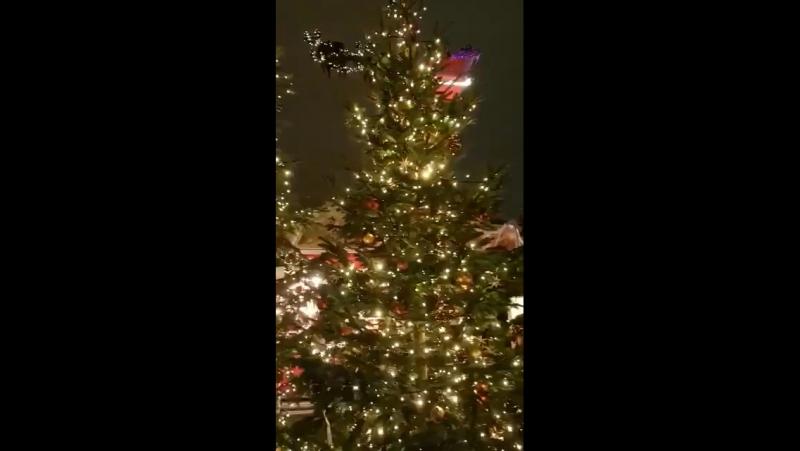 Новогоднее чудо - волшебные сани Деда Мороза