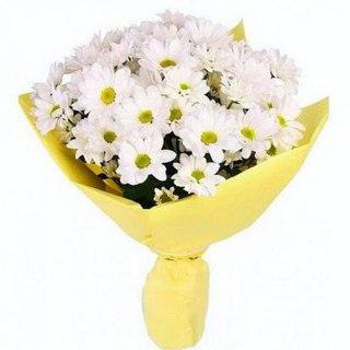 Г.губкин доставка цветов доставка цветов по королеву