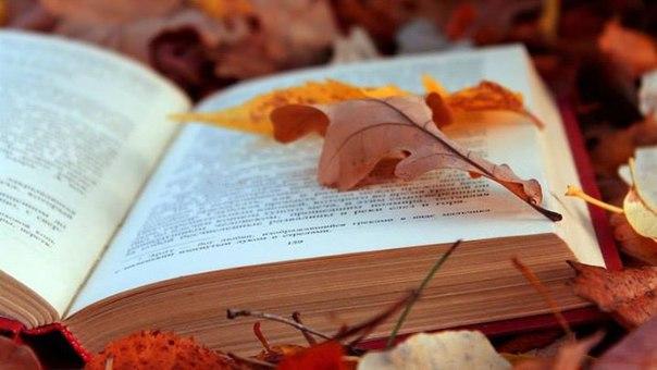 11 лучших книг по финансам для тех, кому нет 30  Разумное управление