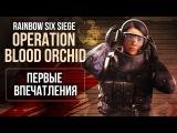 Rainbow Six Siege Operation Blood Orchid - Первые впечатления