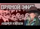 А Купцов 1917 2017 ИДИОТИЗМ ВЫДУМАННОЙ РЕВОЛЮЦИИ