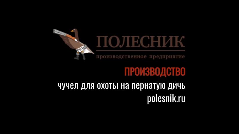 Чучела производственного предприятия Полесник Тизер весна 2017
