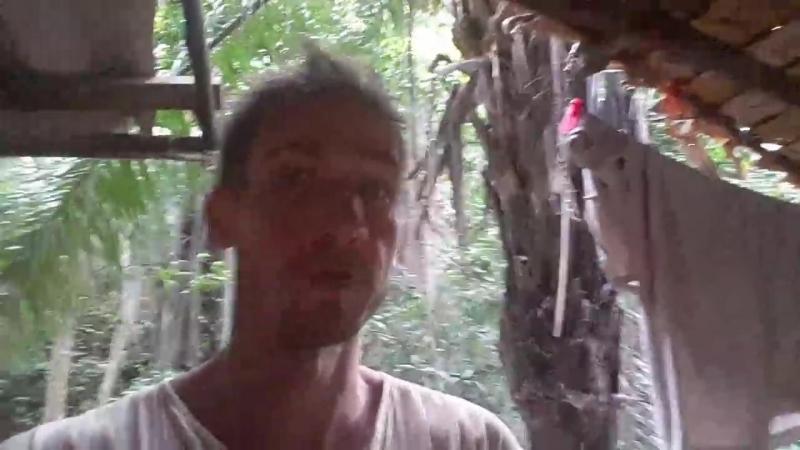палм бич пайам 5