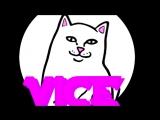 Vice.