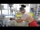Выбираем профессию Медсестра