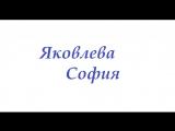 Яковлева София. Визитка