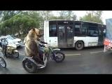Медведь во главе сходки байкеров