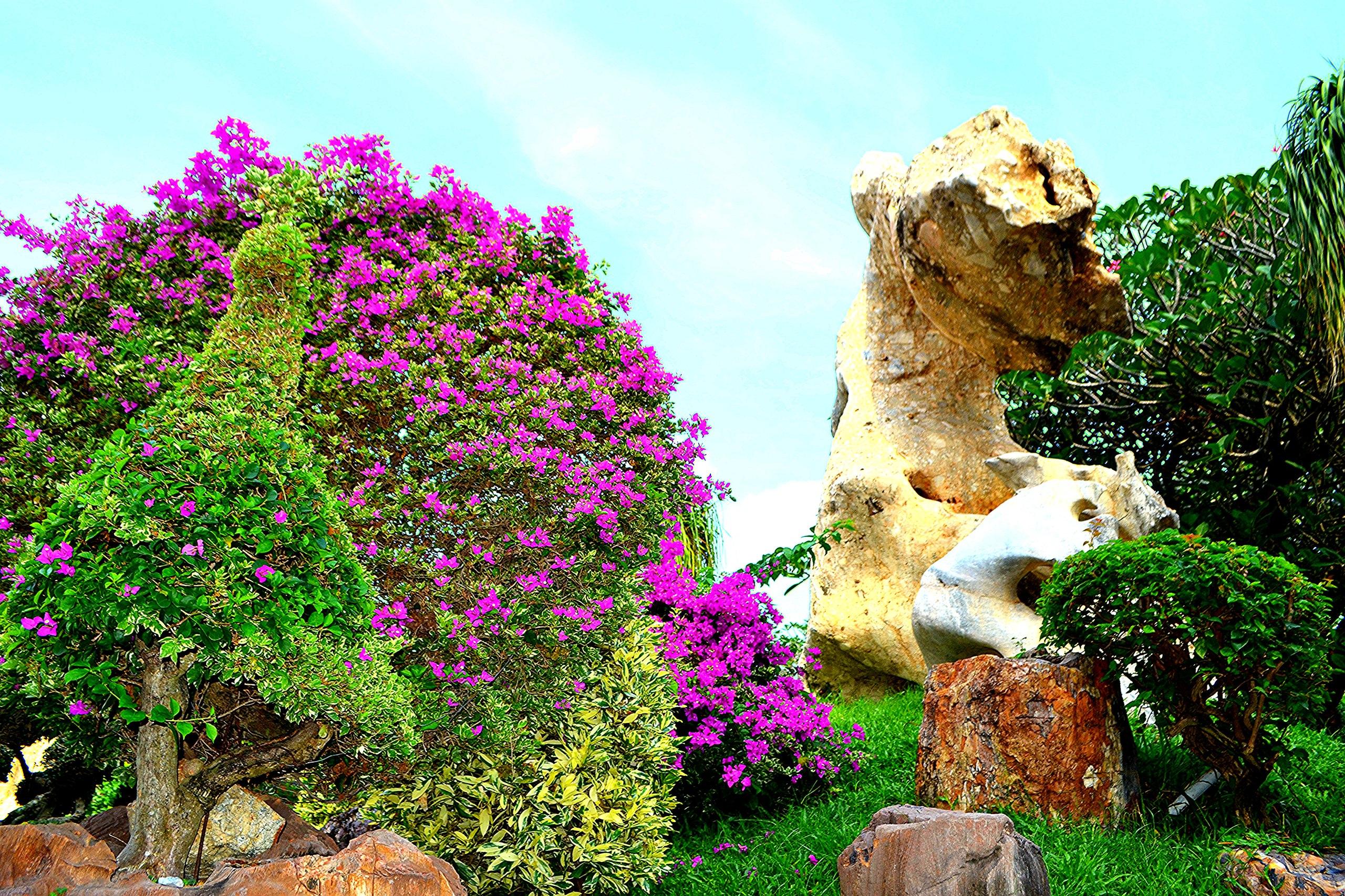 Елена Руденко ( Валтея ). Таиланд. Парк миллионолетних камней и крокодиловая ферма. CGUU-5NSnRE