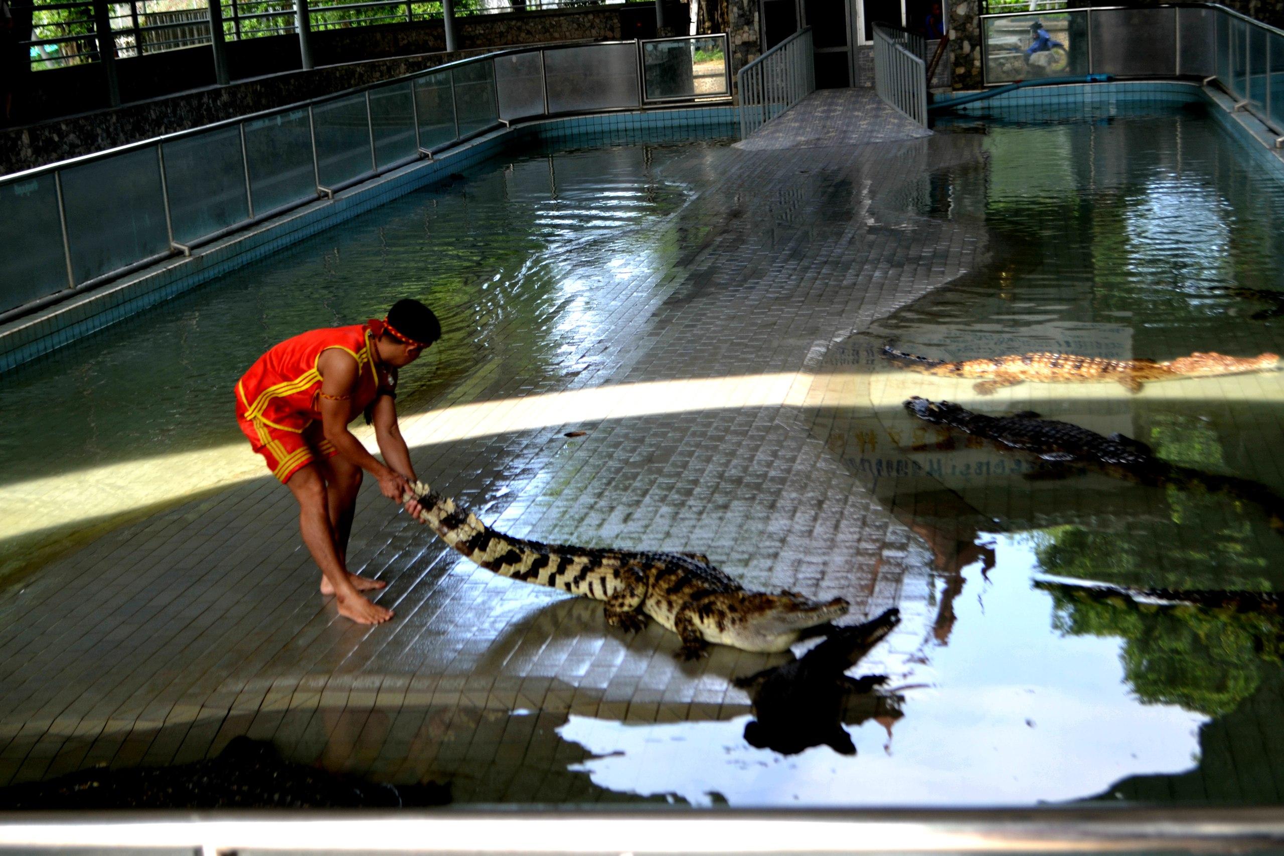 Елена Руденко ( Валтея ). Таиланд. Парк миллионолетних камней и крокодиловая ферма. - Страница 2 AVlsiSP9-3Y