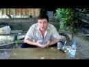 Рецепт Чингиз-хана – самый эффективный способ очищения организма ...от грибов и пар