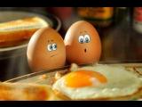 Что будет если кушать по три яйца каждый день