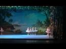 Танец маленьких лебедей зимой