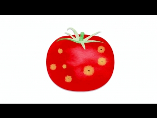 Можно ли есть подпорченные овощи и фрукты