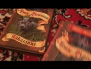 Мои книги Коты воители warriors
