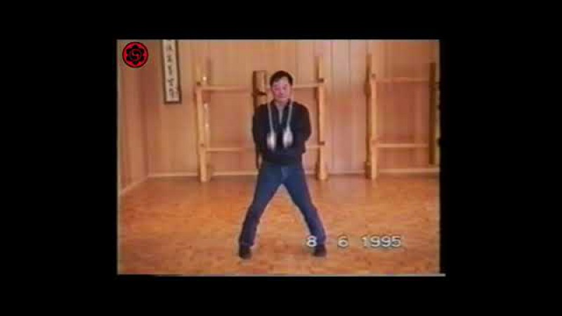 Dai Sifu Wong Shun Leung practicando Bart Cham Dao / Wing Chun Kung Fu