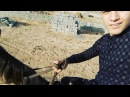 Punhan_berno video