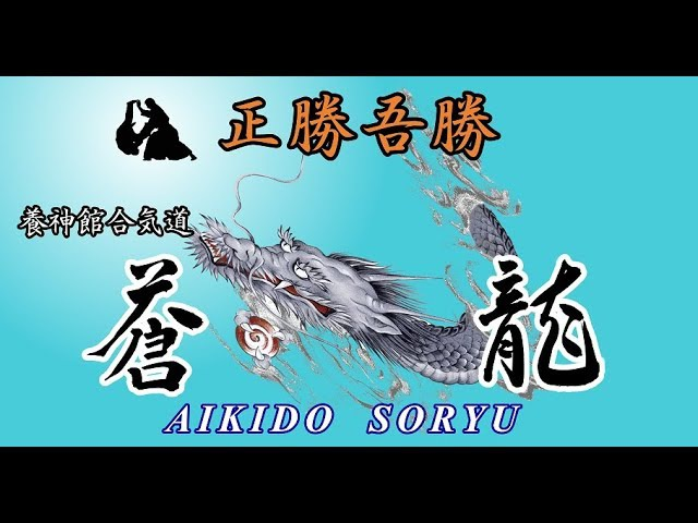 Mitsuhashi Akira 三橋亮 師範  第62回 養神館合気道 全日本大会