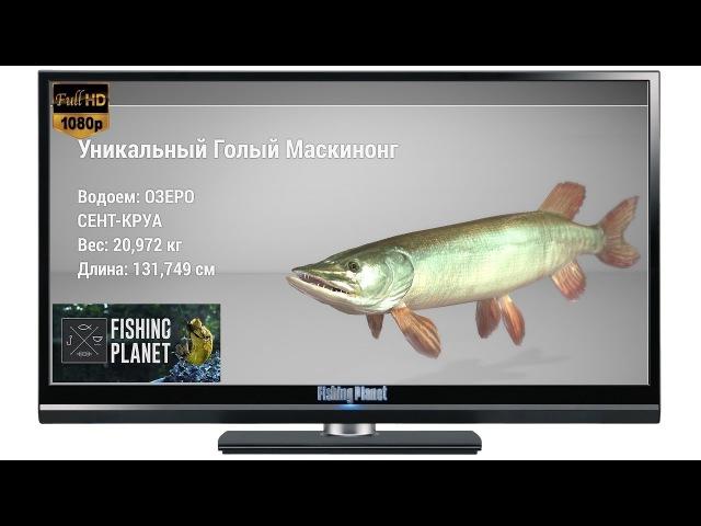 Fishing Planet Уникальный Голый Маскинонг