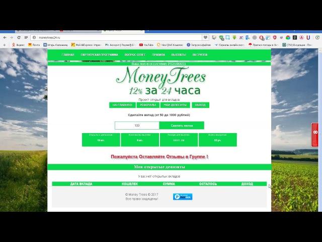 Money Trees 12 % за 24 часа