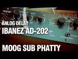 IBANEZ AD-202 Analog Delay  MOOG SUB PHATTY