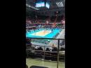 Волейбол Зенит Ярославич