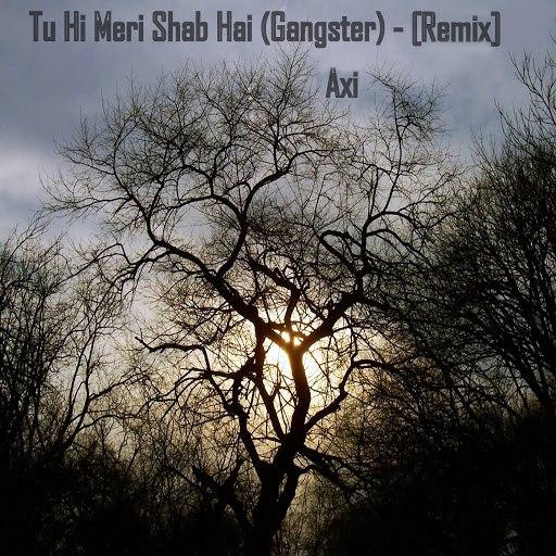 Axi альбом Tu Hi Meri Shab Hai (Gangster) (Remix)